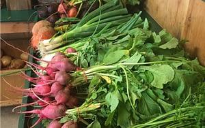High fiber vegetables support blood sugar balance